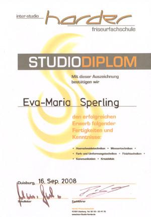 Zertifikat11