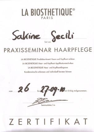Zertifikat15