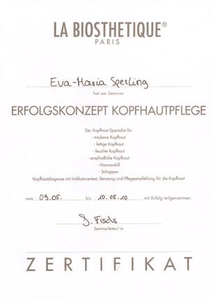 Zertifikat5